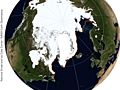 Arctic Sea Ice Update