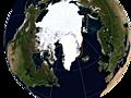 Global sea ice update