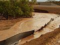 Arlene, Tropics Aid Drought Areas