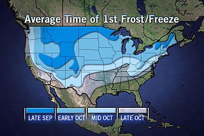 400x266_09111635_averagetimeof1stfrost.jpg