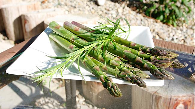 Asparagus, Tarragon