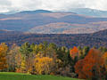 Warm fall may jeopardize foliage displays in northeastern US