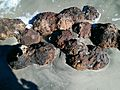 Hurricane Matthew uncovers Civil War-era cannonballs in Folly Beach, South Carolina
