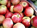 Michigan Facing Tough Year for Apples, Washington Still Thriving