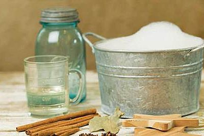 Natural Remedies for Kitchen Pests
