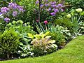 10 Tips for Creating a Low Maintenance Garden