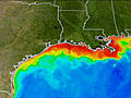 Huge 'Dead Zone' Predicted in Gulf of Mexico