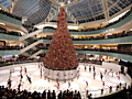 10 awe-inspiring Christmas trees across America
