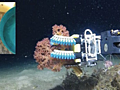 Meet 'Squishy Fingers': Flexible robot advances undersea research