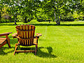 Should you overseed your lawn this spring?