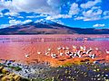 Most spectacular pink lakes in the world