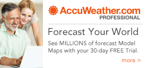 AccuWeather Professional