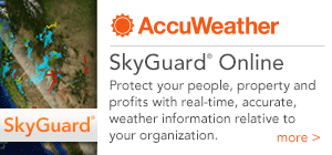SkyGuard Online