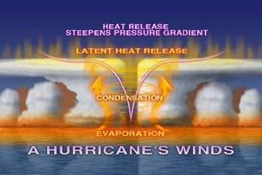 A Hurricane's Winds image